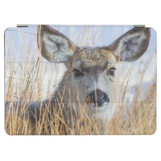 ワイオミング、Sublette郡のラバシカの雌ジカの休息 iPad Air カバー