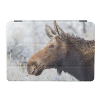 ワイオミング、Sublette郡の牛アメリカヘラジカのヘッド打撃 iPad Miniカバー
