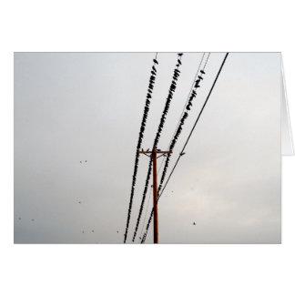 ワイヤーの鳥 カード