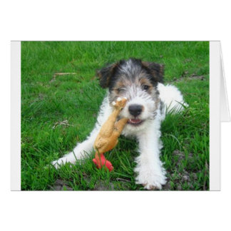 ワイヤーフォックステリア犬pup.png カード