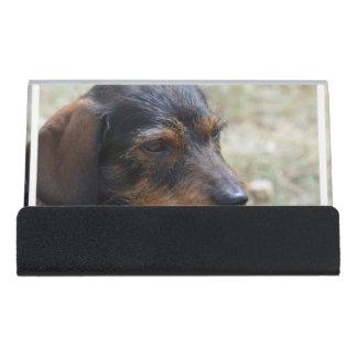 ワイヤー髪のDaschund犬 デスク名刺ホルダー
