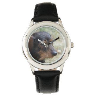 ワイヤー髪のDaschund犬 腕時計