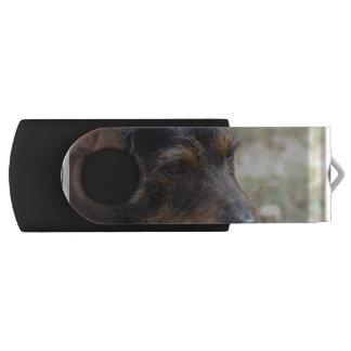ワイヤー髪のDaschund犬 USBフラッシュドライブ