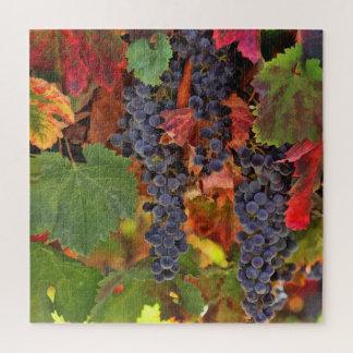 ワインの里の収穫のブドウPuzzel ジグソーパズル