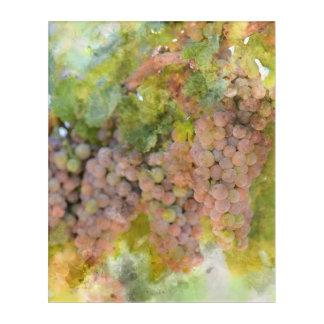 ワインを作ること準備ができたつる植物のブドウ アクリルウォールアート