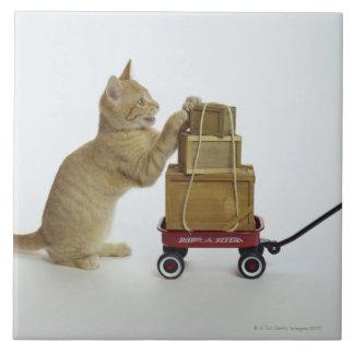 ワゴンおよび箱を持つ猫 タイル
