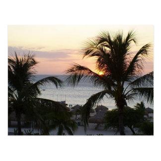 ワシのビーチのアルバの日没の郵便はがき ポストカード