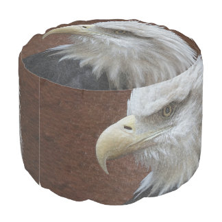 ワシの鳥の野性生物の動物のPoufの枕 プーフ