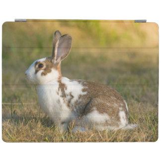 ワシントン州の発見公園。 大人のウサギ iPadスマートカバー
