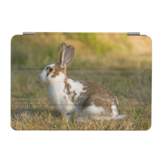 ワシントン州の発見公園。 大人のウサギ iPad MINIカバー