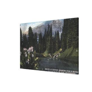 ワシントン州-雨の国立公園、撃つSta キャンバスプリント