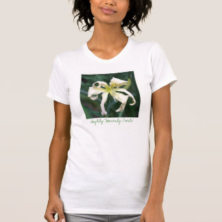 ワスレグサの「天空のカール Tシャツ