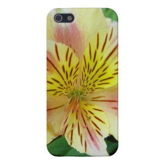 ワスレグサのiPhone 5の場合 iPhone 5 Case