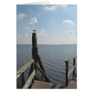 ワッデン海カードの近くの湖の桟橋のカモメ グリーティングカード