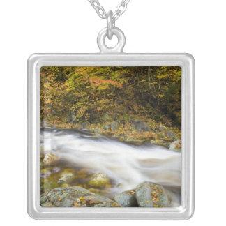ヴァーモントの緑の秋のとどろく小川 シルバープレートネックレス