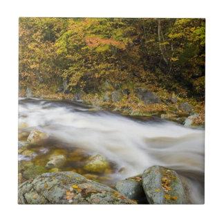 ヴァーモントの緑の秋のとどろく小川 タイル