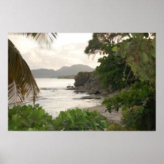 ヴィエケス島、プエルトリコ ポスター