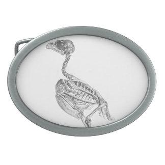 ヴィンテージのひな鳥の骨組エッチング 卵形バックル