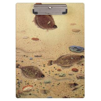 ヴィンテージのもがき、海洋の海の生命カレイ クリップボード