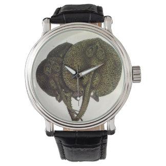 ヴィンテージのアカエイのアカエイ、海洋生物動物 腕時計