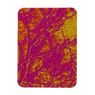 ヴィンテージのアクリルのColormaniaエネルギープレート マグネット