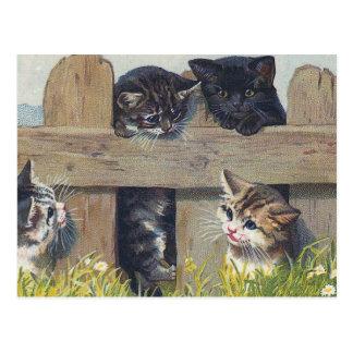ヴィンテージのイラストレーションを遊んでいる4匹の子ネコ ポストカード