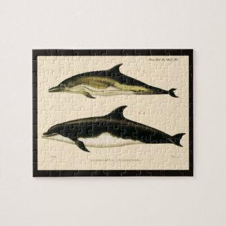 ヴィンテージのイルカ、海生動物およびほ乳類 ジグソーパズル