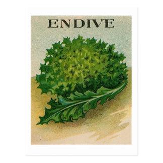 ヴィンテージのエンダイブの種の包みの郵便はがき ポストカード