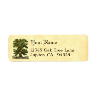 ヴィンテージのオークの木のカスタムの差出人住所ラベル ラベル
