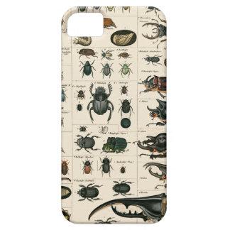 ヴィンテージのカブトムシの絵 iPhone SE/5/5s ケース