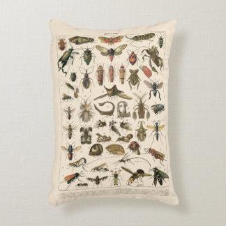 ヴィンテージのカラフルな昆虫の昆虫学の分類学 アクセントクッション
