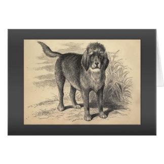 ヴィンテージのカワウソ猟犬の挨拶 カード