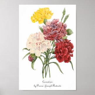 ヴィンテージのカーネーションのナデシコの庭によってはRedouteが開花します ポスター