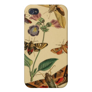 ヴィンテージのガの昆虫学の場合 iPhone 4/4S ケース