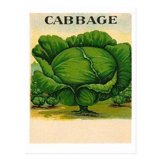 ヴィンテージのキャベツ種の包みの郵便はがき ポストカード