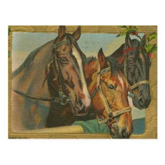 ヴィンテージのクリスマスの馬 ポストカード