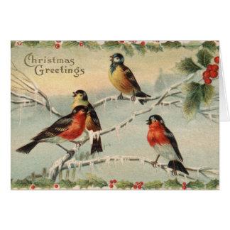 ヴィンテージのクリスマスの鳥 カード