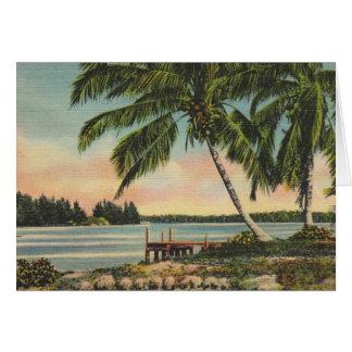 ヴィンテージのココヤシの木 カード