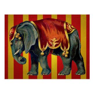 ヴィンテージのサーカス象 ポストカード