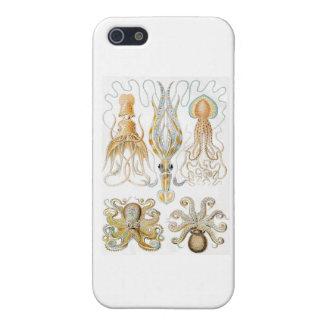 ヴィンテージのタコのイラストレーション iPhone 5 CASE