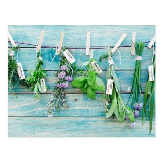 ヴィンテージのターコイズの色彩の鮮やかな木製の壁のherbals ポストカード