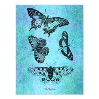 ヴィンテージのティール(緑がかった色)の青い蝶スケッチ-蝶 フォトプリント