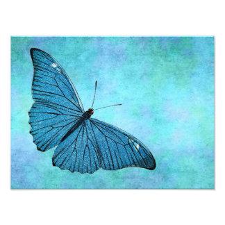 ヴィンテージのティール(緑がかった色)の青い蝶19世紀のイラストレーション フォトプリント