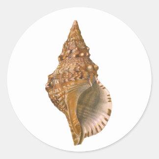 ヴィンテージのトリトンの貝殻の貝、海洋の海動物 ラウンドシール