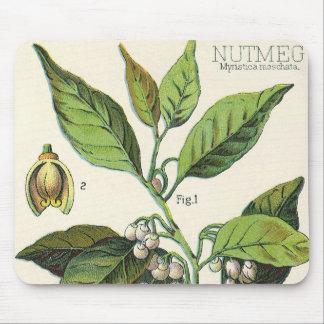 ヴィンテージのニクズクの植物のフルーツの種、食糧ハーブのスパイス マウスパッド