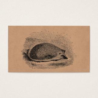 ヴィンテージのハリネズミの19世紀のハリネズミのイラストレーション 名刺