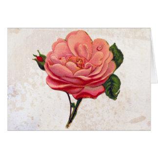 ヴィンテージのピンクのバラのぼろぼろのシックなプリント カード