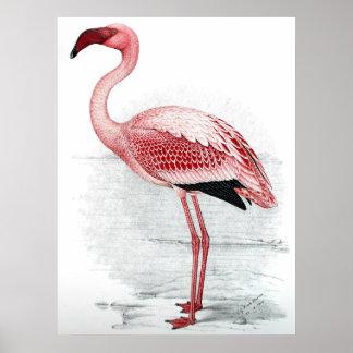 ヴィンテージのピンクのフラミンゴの絵画 ポスター