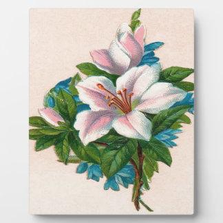ヴィンテージのピンクの花、祖母の誕生日 フォトプラーク