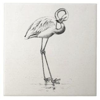 ヴィンテージのフラミンゴの鳥の旧式な鳥のテンプレート タイル